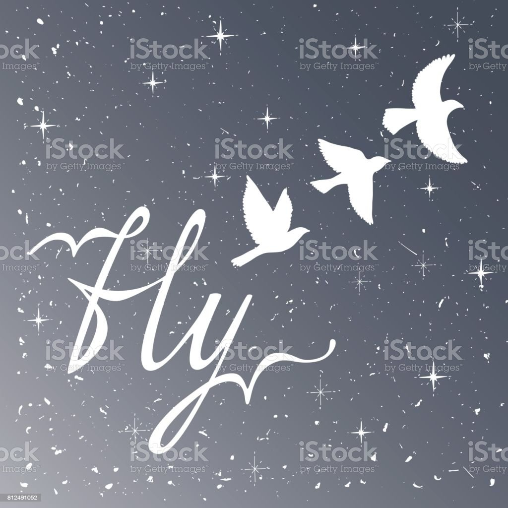 Freedom. Inspirational quote. Modern calligraphy phrase with silhouette birds. Night sky pattern. vector art illustration