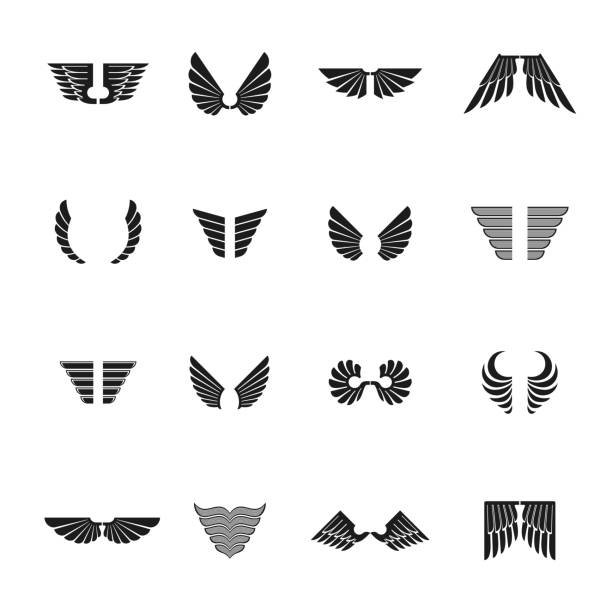 freedom wings emblems set. heraldic coat of arms decorative signs isolated vector illustrations collection. - animal wing stock illustrations