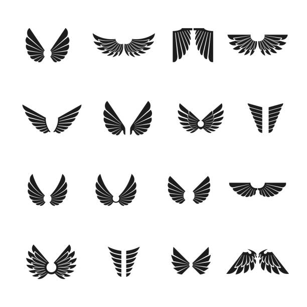 freedom wings emblems set. heraldic coat of arms decorative symbols isolated vector illustrations collection. - animal wing stock illustrations