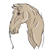 istock Freehand horse portrait vector illustration 1294454077