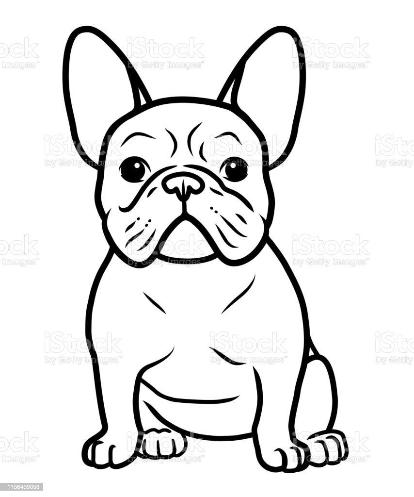 französische bulldogge zeichnen