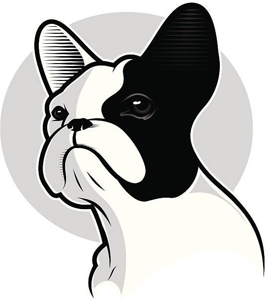 Royalty Free French Bulldog Clip Art Vector Images Illustrations