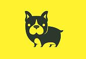vector illustration of french bulldog standing