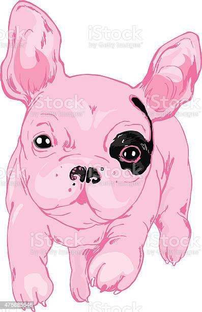 French bulldog vector id475685546?b=1&k=6&m=475685546&s=612x612&h=lgmmazhriydxb fnybfswpfqesfnt gnyre0h q n3w=