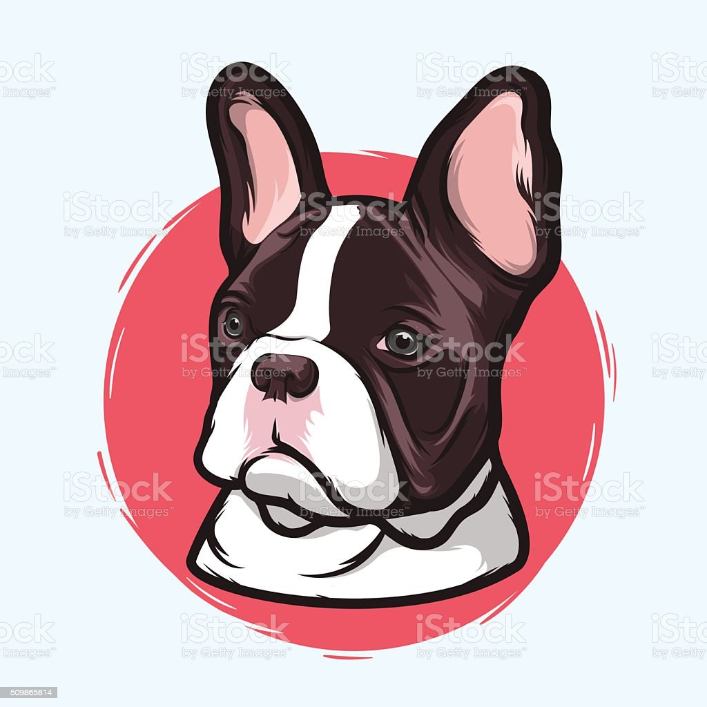 French Bulldog Closeup Portrait of the Domestic Dog French Bulldog Breed on the White Background. Hand Drawn Line Art. Vector Illustration. Animal stock vector