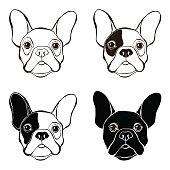 French Bulldog. Vector set of  bulldog's face. Sketch, four variants.