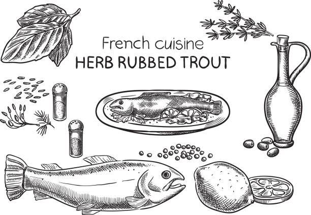 French cusine. vector art illustration
