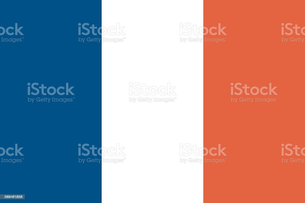 French Flag (Official Colours and Shape) ベクターアートイラスト