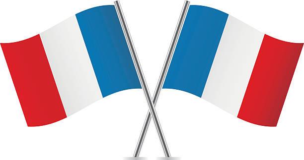 ilustraciones, imágenes clip art, dibujos animados e iconos de stock de banderas francesa. - bandera francesa