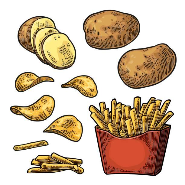 pommes-frites kleben kartoffel in pappschachtel und chips. - kartoffeln stock-grafiken, -clipart, -cartoons und -symbole