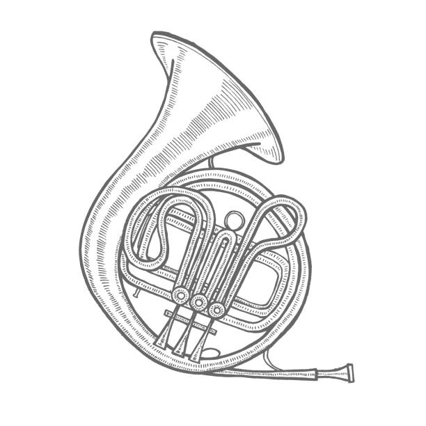 french horn in hand-drawn style - waltornista stock illustrations