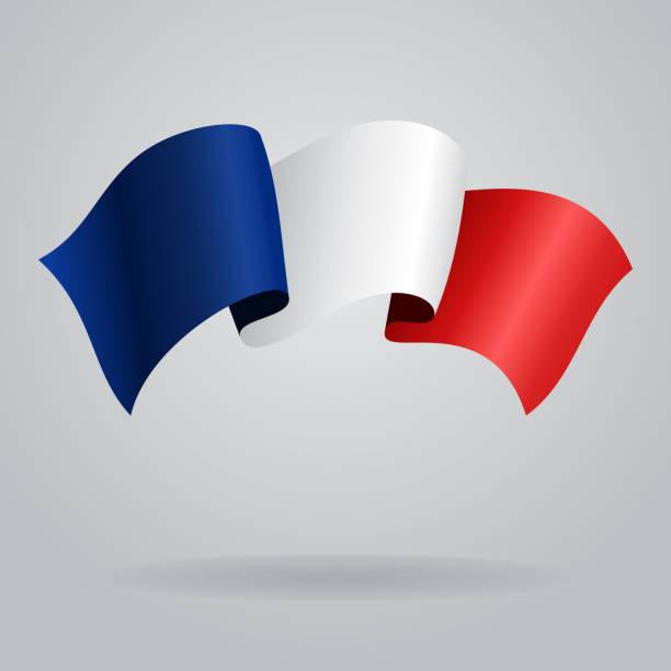 ilustraciones, imágenes clip art, dibujos animados e iconos de stock de francés bandera saludar con la mano. ilustración vectorial - bandera francesa