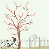 Fresh Air Cherry Tree and Bicycle