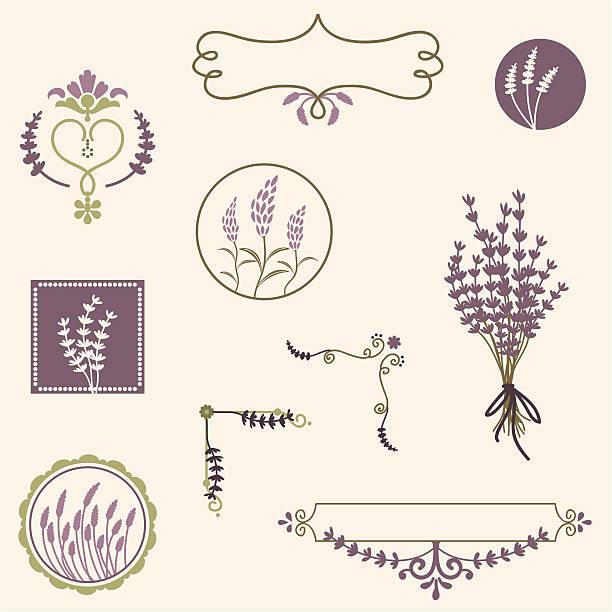 Fresh Air Lavender A collection of lavender design elements. (Includes .jpg) lavender color stock illustrations