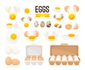 Fresh and boiled eggs. Cartoon broken eggs with cracked eggshell, in cardboard box and egg half with yolk vector illustration