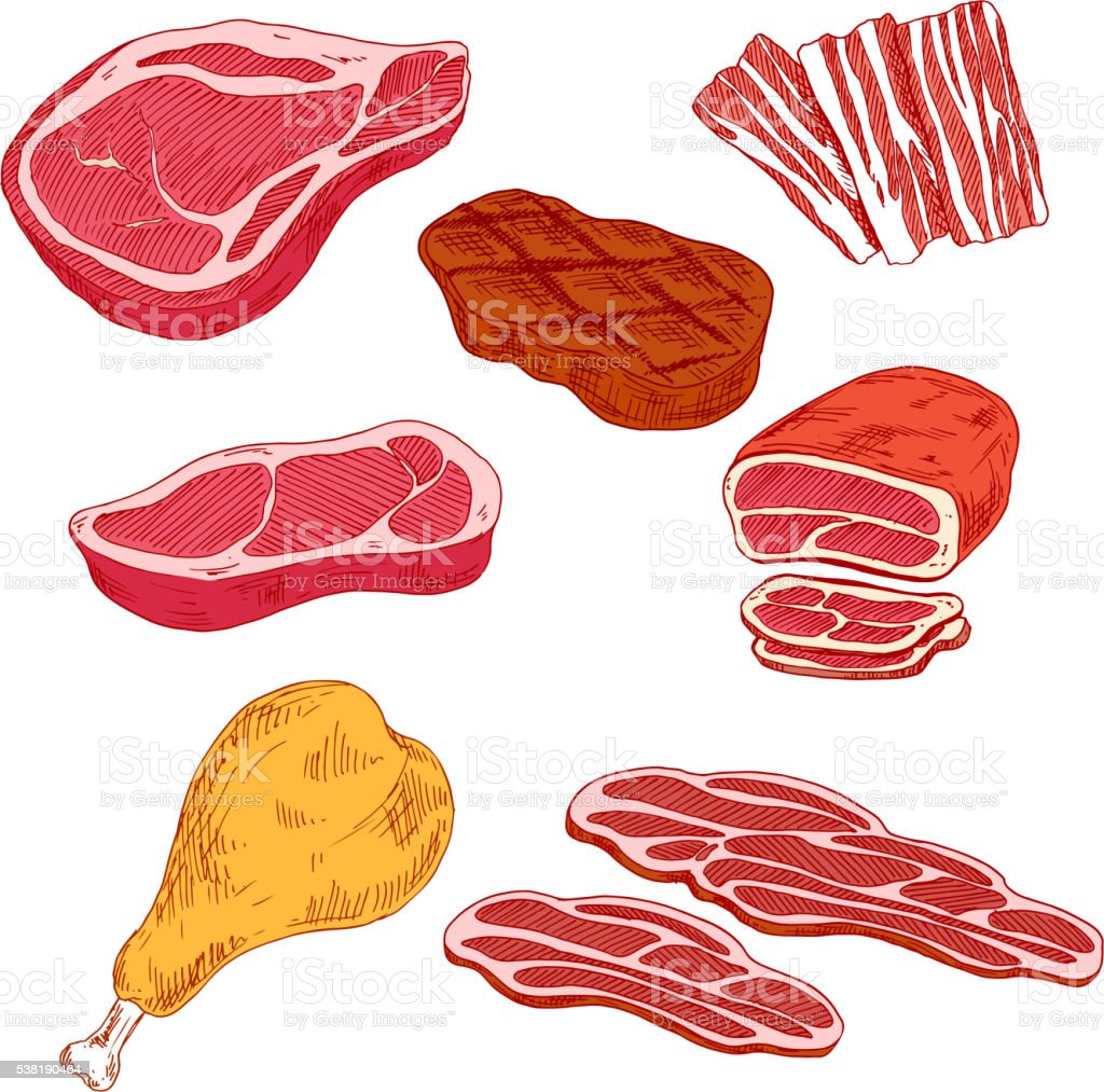 Fresh and cooked meat products for barbecue design vector art illustration