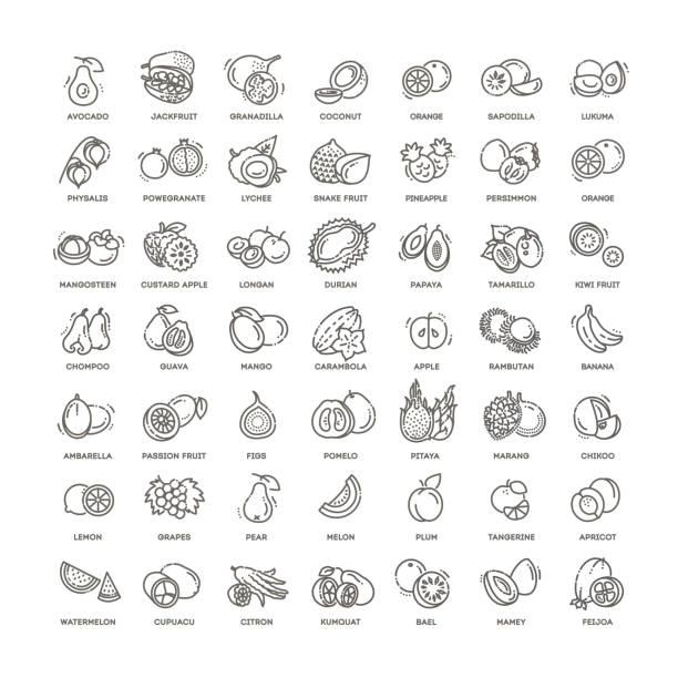 illustrations, cliparts, dessins animés et icônes de ingrédients frais et naturels - fruit de la passion