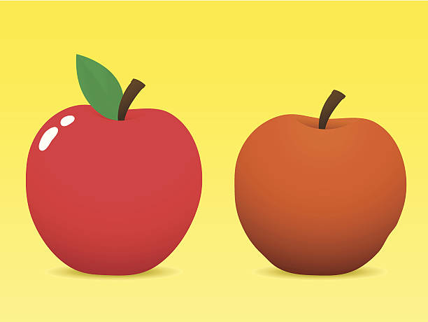 fresh and old apple - rotten apple stock illustrations, clip art, cartoons, & icons