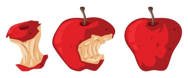 fresh apple and rotten apple - rotten apple stock illustrations, clip art, cartoons, & icons