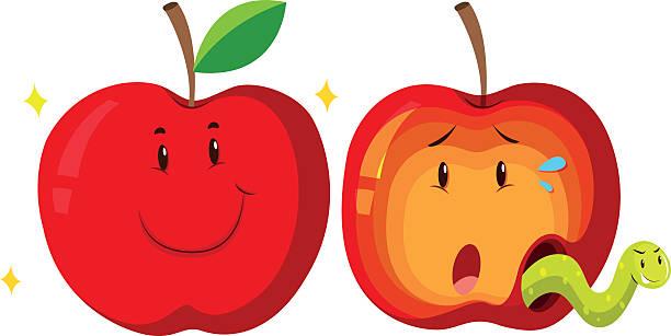 fresh apple  rotten apple - rotten apple stock illustrations, clip art, cartoons, & icons