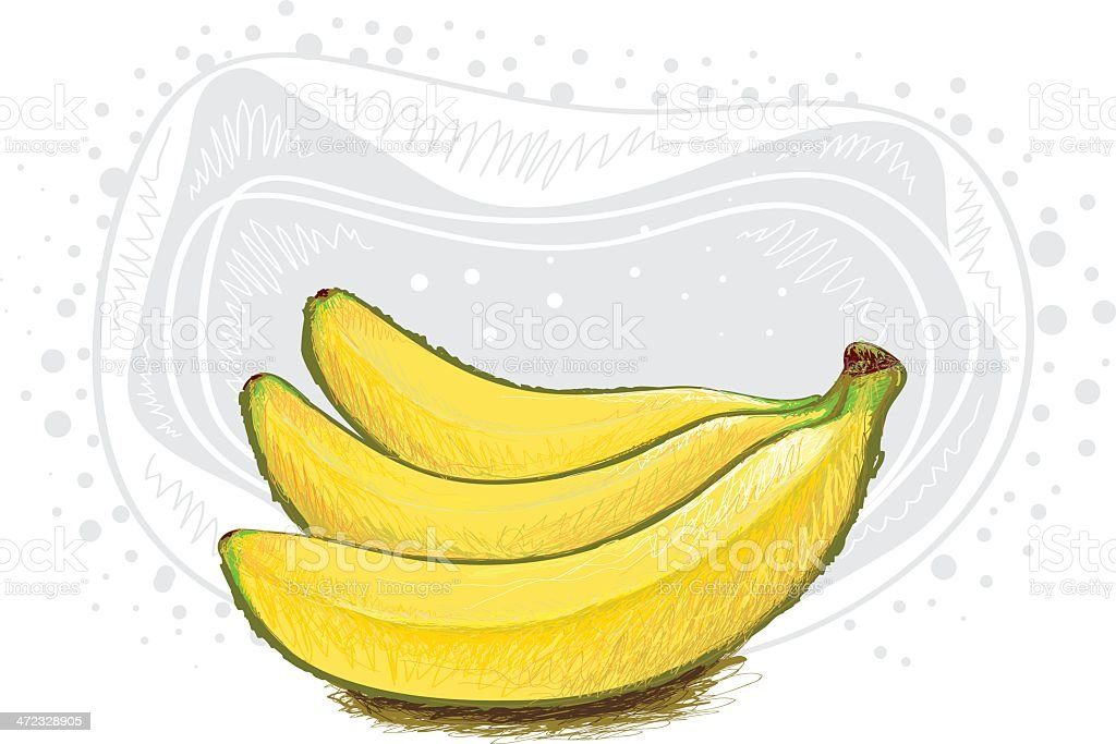 Fresh Banana royalty-free fresh banana stock vector art & more images of banana