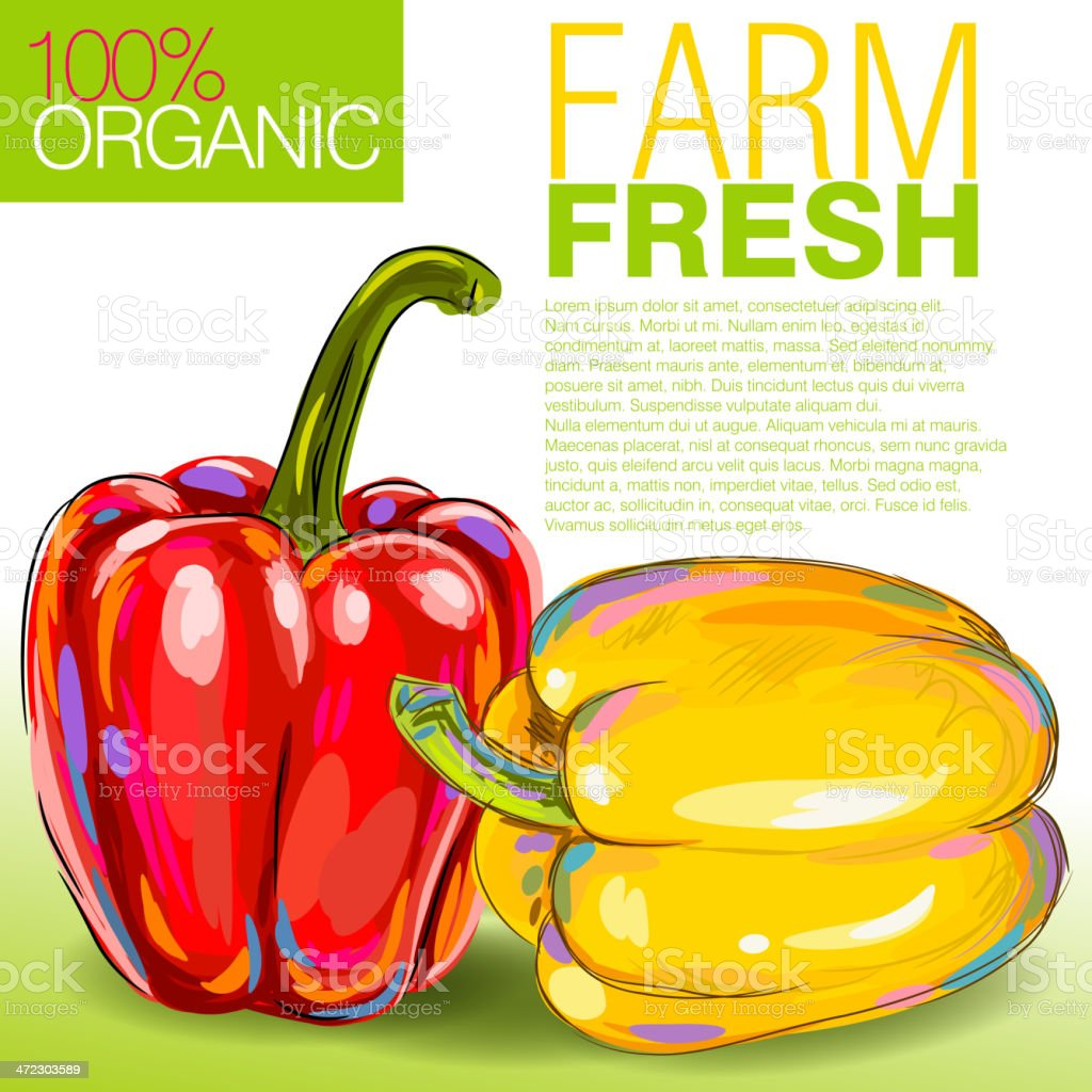 Fresh Bell peppers royalty-free fresh bell peppers stock vector art & more images of art