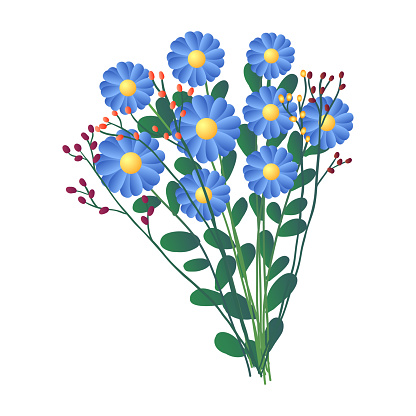 Fresh bouquet of field blue flowers isolated on white background