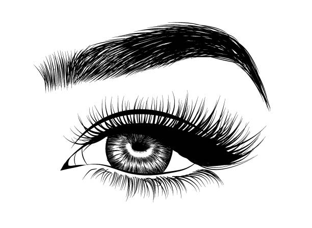 Royalty Free Threading Eyebrows Clip Art, Vector Images ...
