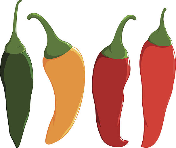 Fresh colorful hot chili peppers A set of delicious and hot chili peppers in four colors:  red, green and yellow chili peppers.  mexican restaurant stock illustrations