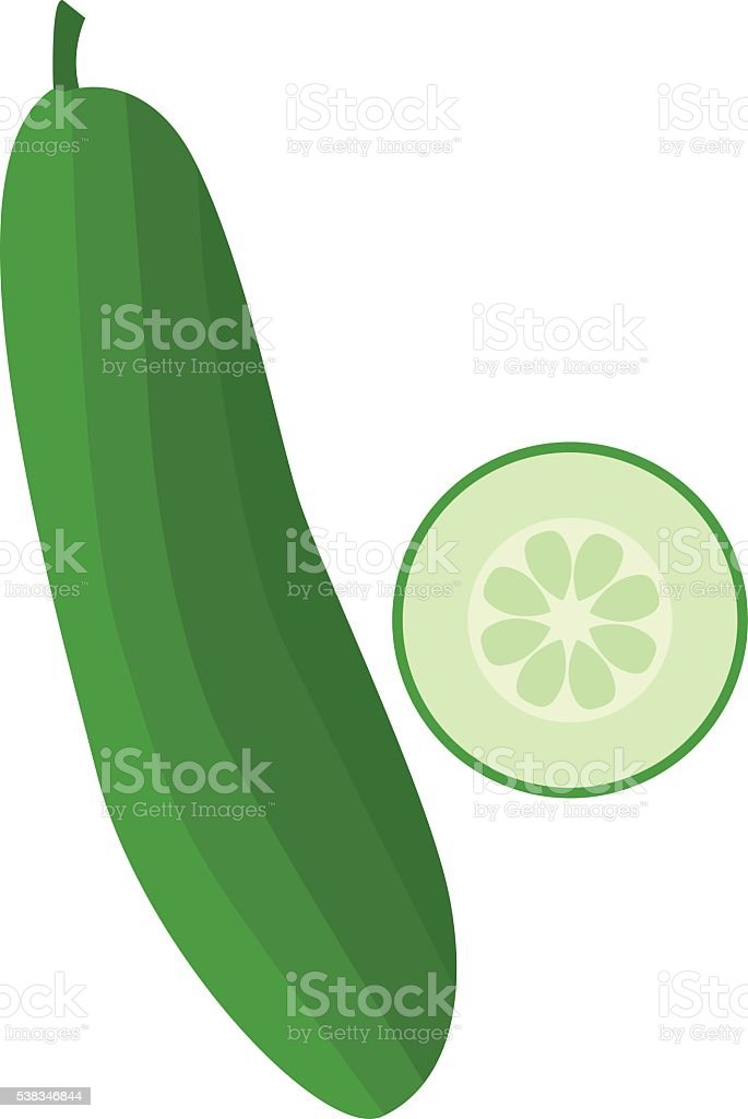 Fresh cucumber with half cut vector illustrations vector art illustration