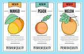 Fresh fruit banner set - Mango, melon, peach. Vector stock illustration - food and  drink design.