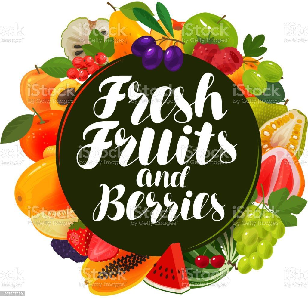 Fresh fruits and berries, banner. Natural food, greengrocery concept. Vector illustration vector art illustration