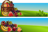 Fresh Fruits Backgrounds/Banners, all elements are in separate layers and grouped. created as very artistic painterly style. Please visit my portfolio for more options.