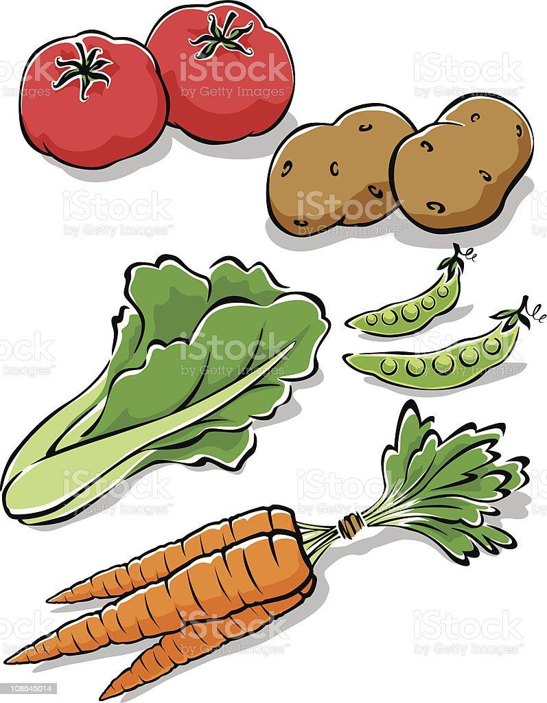 Fresh Garden Vegetables royalty-free fresh garden vegetables stock vector art & more images of carrot
