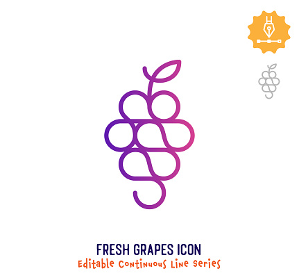 Fresh grapes vector icon illustration for logo, emblem or symbol use. Part of continuous one line minimalistic drawing series. Design elements with editable gradient stroke line.