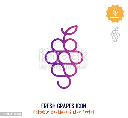 istock Fresh Grapes Continuous Line Editable Stroke Line 1256921990