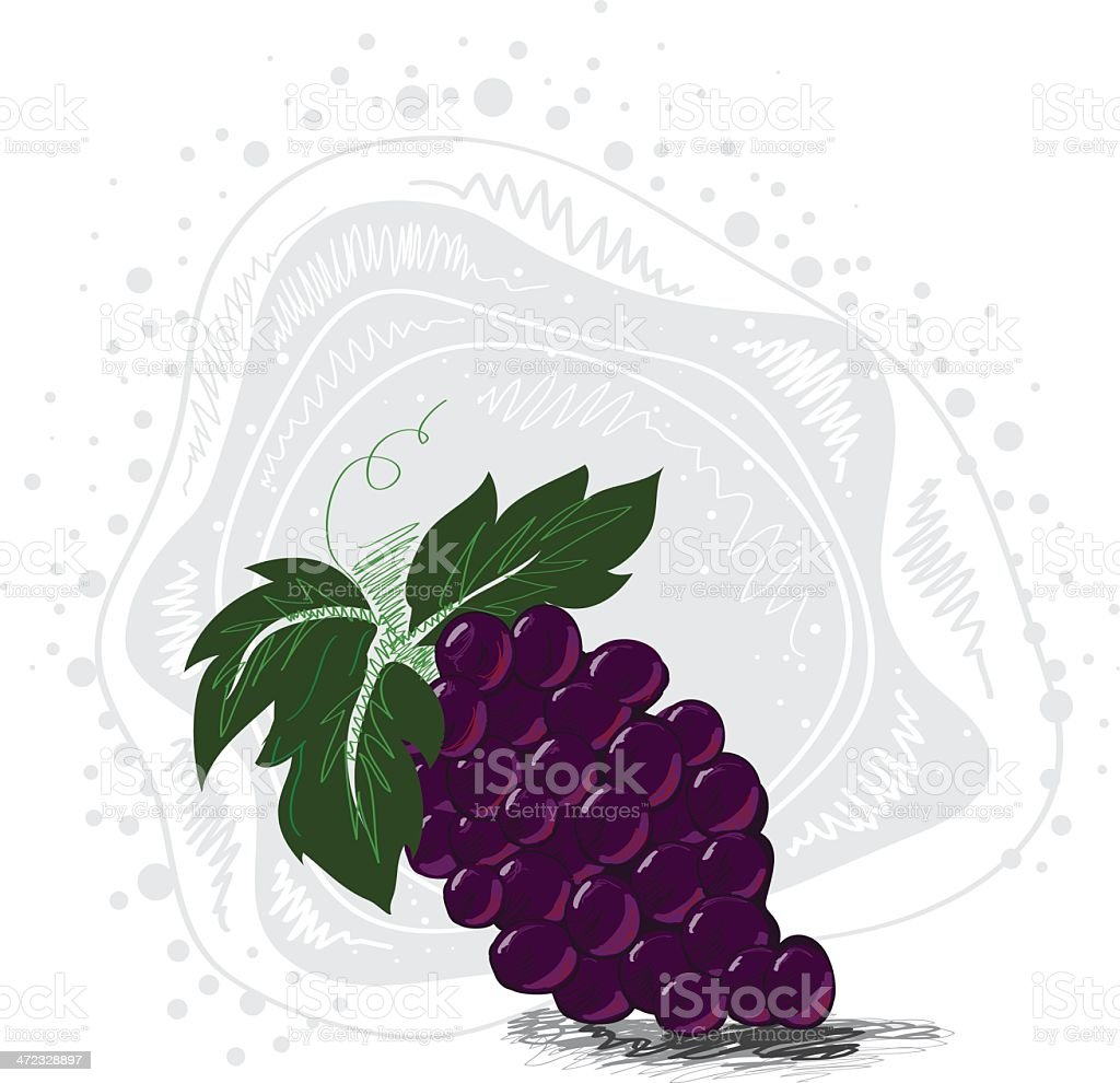 Fresh Grapes royalty-free fresh grapes stock vector art & more images of brush stroke