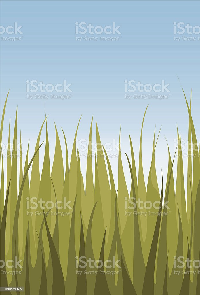 Fresh grass and sky royalty-free stock vector art