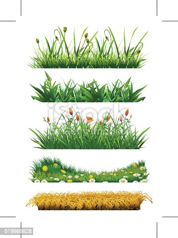 Grass set of vector elements. Fresh grass. Nature and ecology