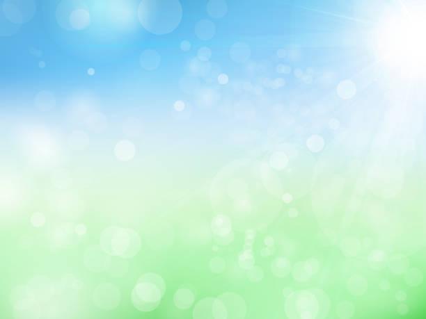 산뜻 한 녹색과 햇빛 - 신선함 stock illustrations