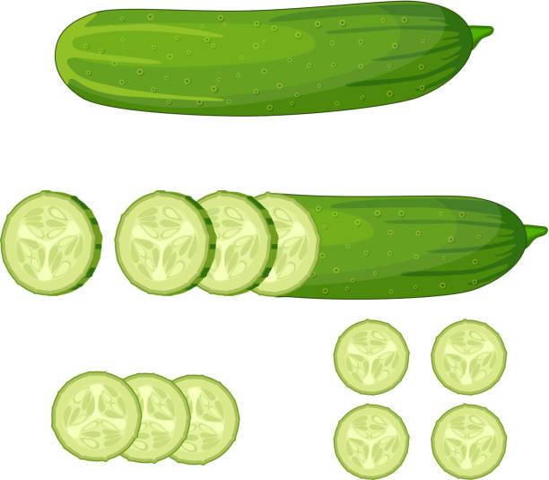 stockillustraties, clipart, cartoons en iconen met verse groene komkommer segment - komkommer