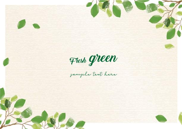 新鮮的綠色框架 - 大自然 幅插畫檔、美工圖案、卡通及圖標