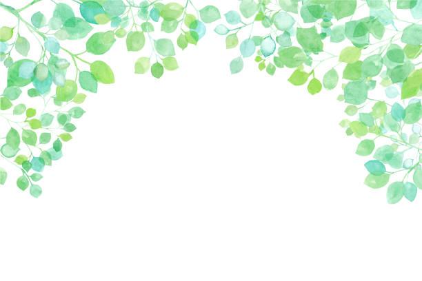 illustrazioni stock, clip art, cartoni animati e icone di tendenza di fresh green sunbeams frame. watercolor illustration trace vector. layout changeable - forest bathing