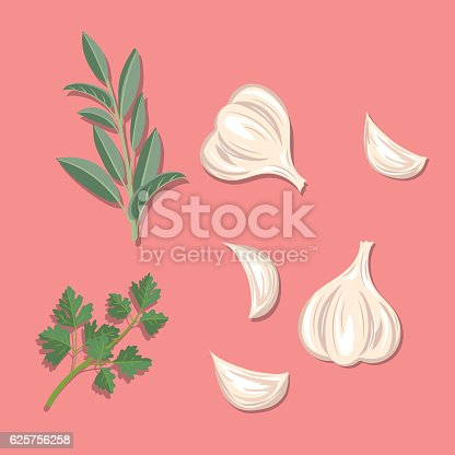 istock Fresh Herbs: Garlic, Sage And Parsley 625756258