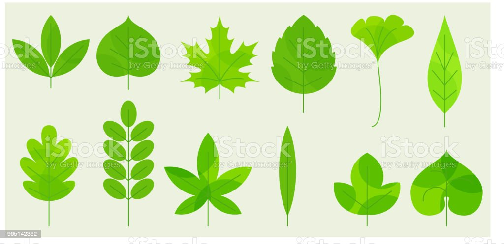 Fresh leaves icons royalty-free fresh leaves icons stock vector art & more images of abstract