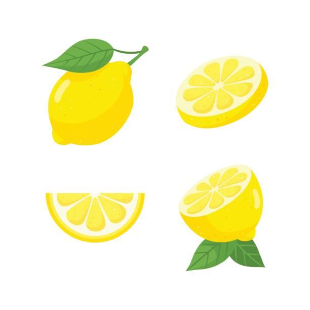 新鮮なレモン フルーツ セット - レモン点のイラスト素材/クリップアート素材/マンガ素材/アイコン素材