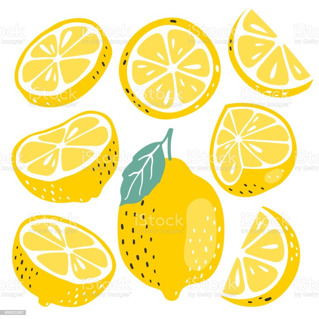 Fresh lemon fruits collection Fresh lemon fruits collection Backgrounds stock vector