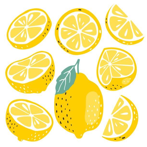 kolekcja świeżych owoców cytryny - cytryna stock illustrations