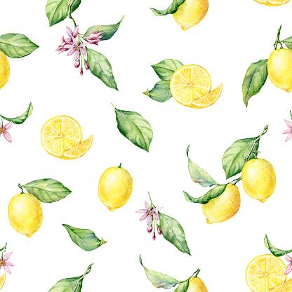 Fresh Lemons watercolor seamless pattern on the white background.