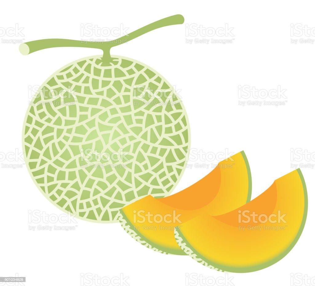royalty free japan melon clip art vector images illustrations rh istockphoto com lemon clip art images lemon clip art black and white